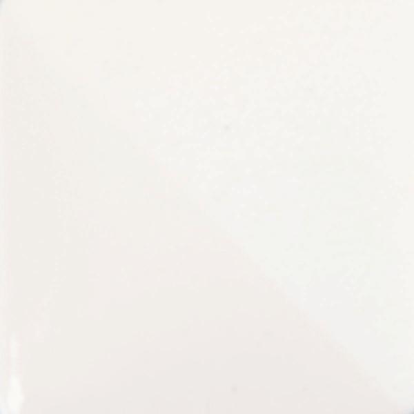 CC 101 Arctic White