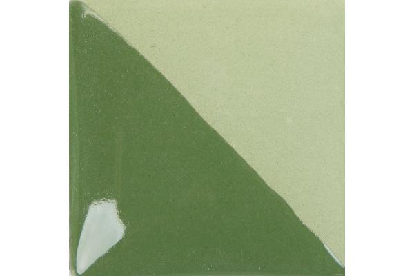 CC 127 Fern Green