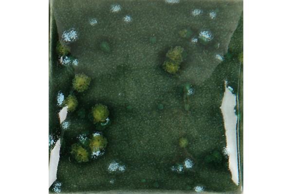 CR 909 Moss Green