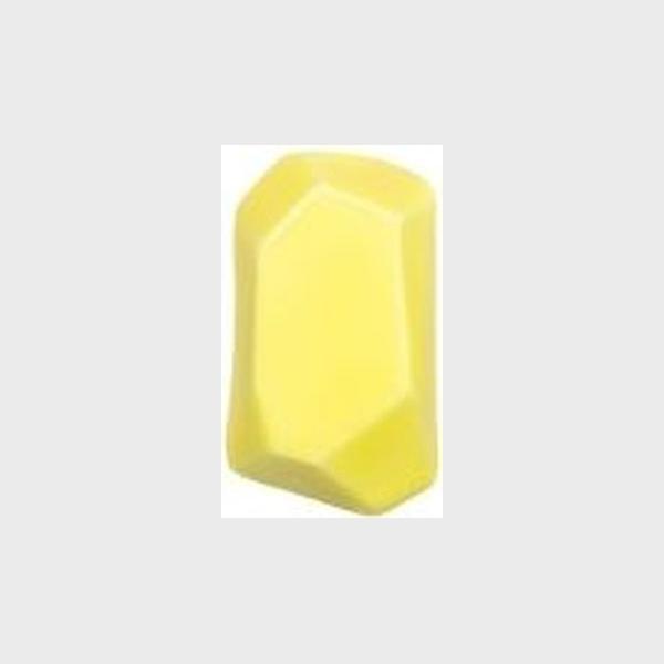 TM 311  Pineapple